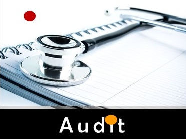 services -akasias-audit